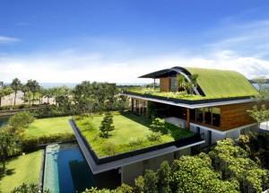 projektowanie ogrodów architektóra przestrzei
