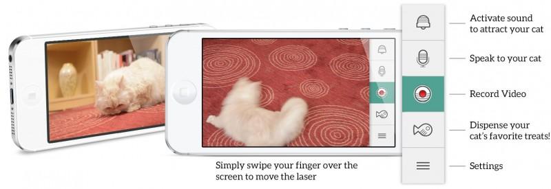 aplikacja w komórece do zarządzania zadlanego kotem