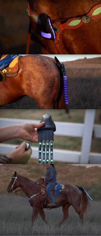 oswietlenie dla konia